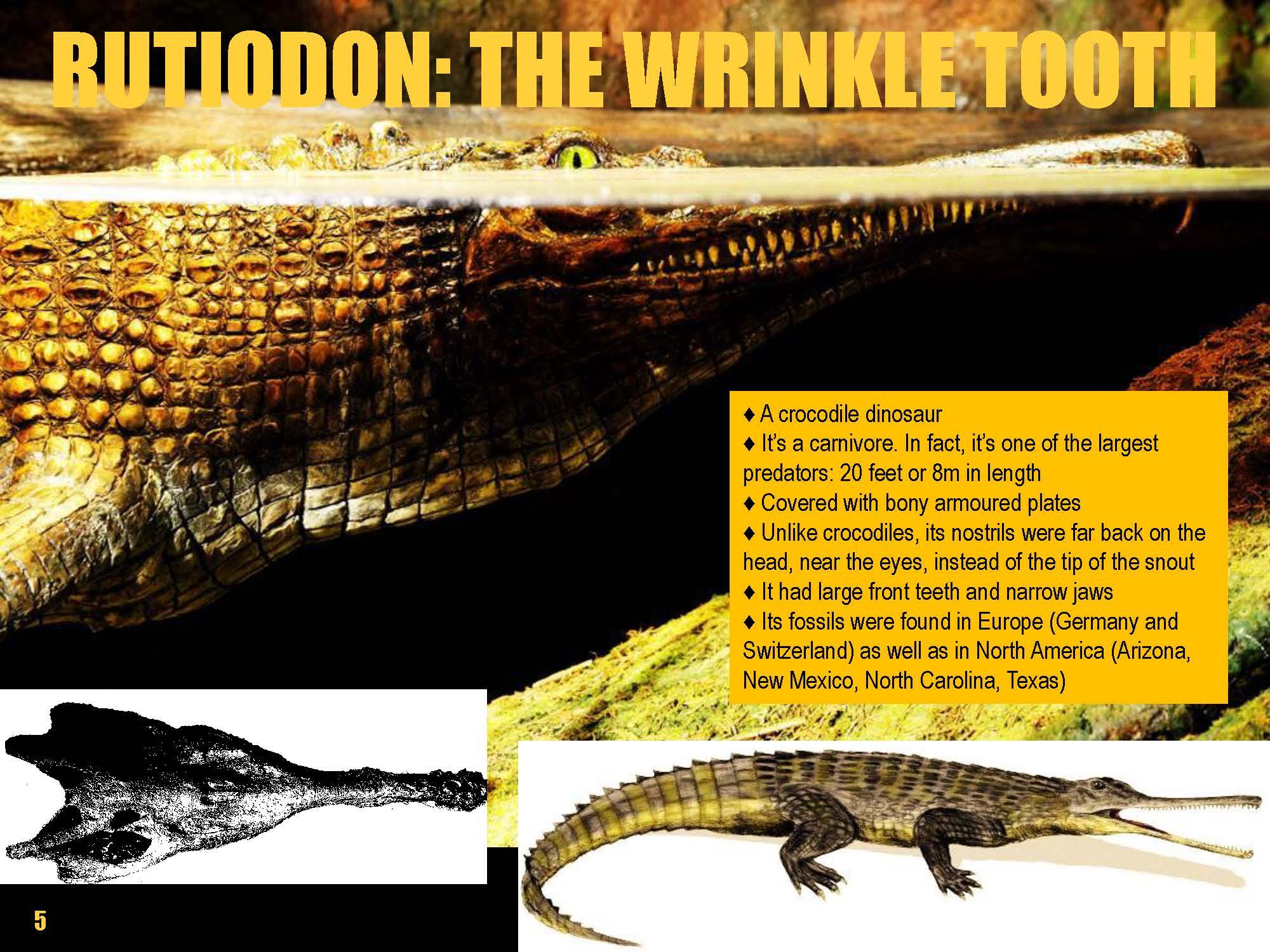 1FINALDinosaur book by Pritvik Sinhadc final book_Page_14